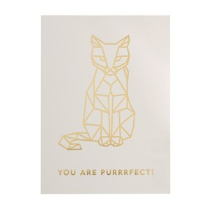 You are purrrfect rose postcard
